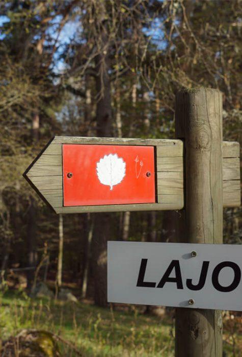 Tourbières de Lajo ©Jean-Sébastien Caron